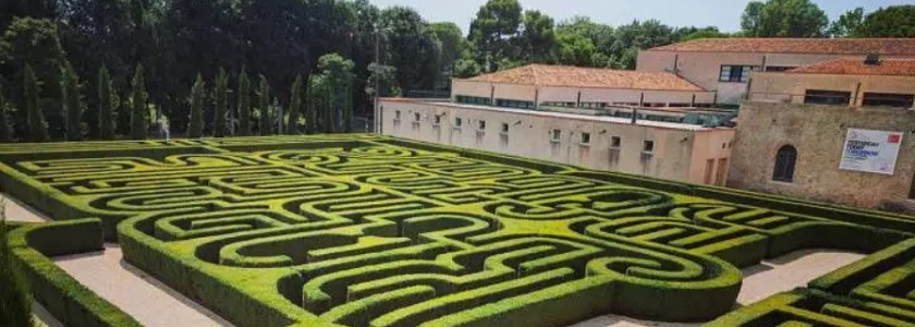 Borges box trees