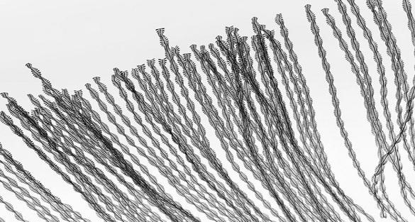 lines-of-flight-2