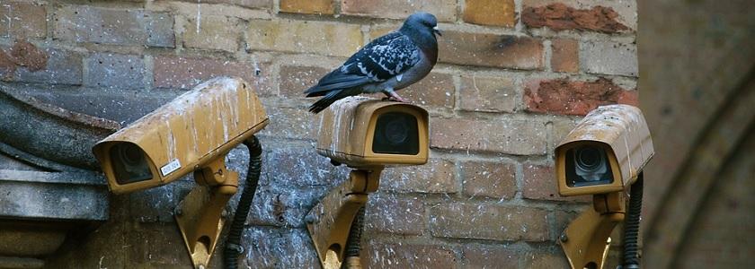 MI5's poor surveillance datahandling