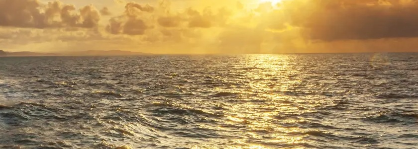 The sea, thesea