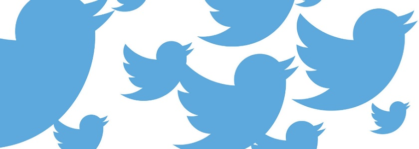 Twitter news echoes