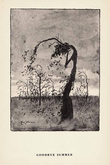 an-appreciation-of-trees-4